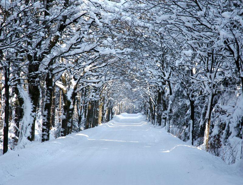 Winter Höfenklein